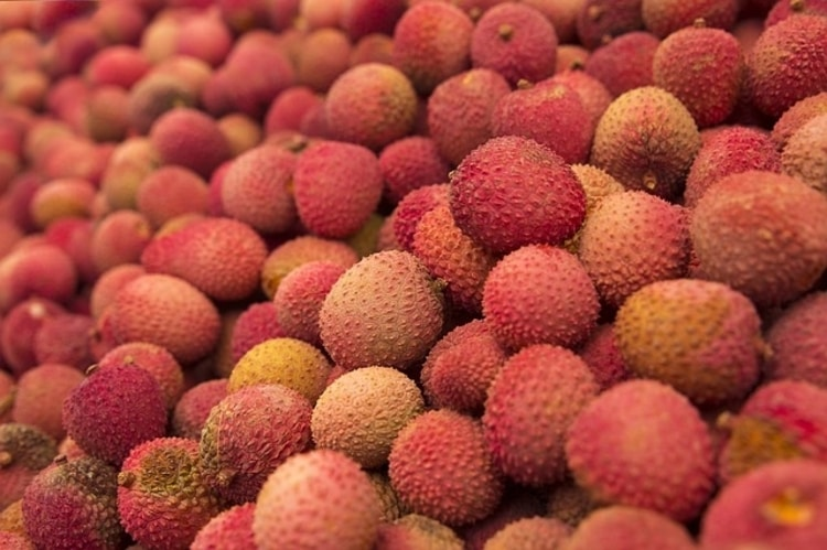 Lychee-Image